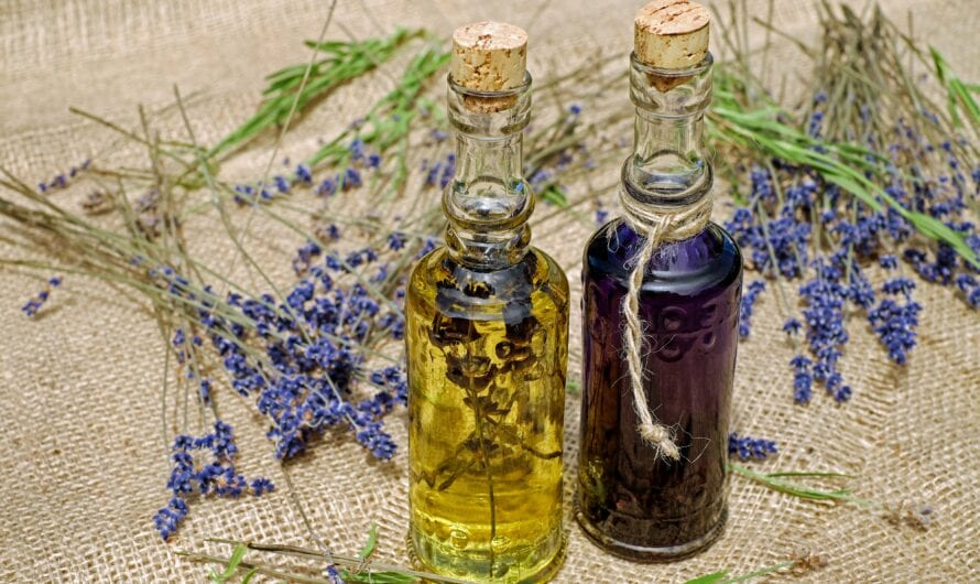 Everything you need to know about Homeopathy
