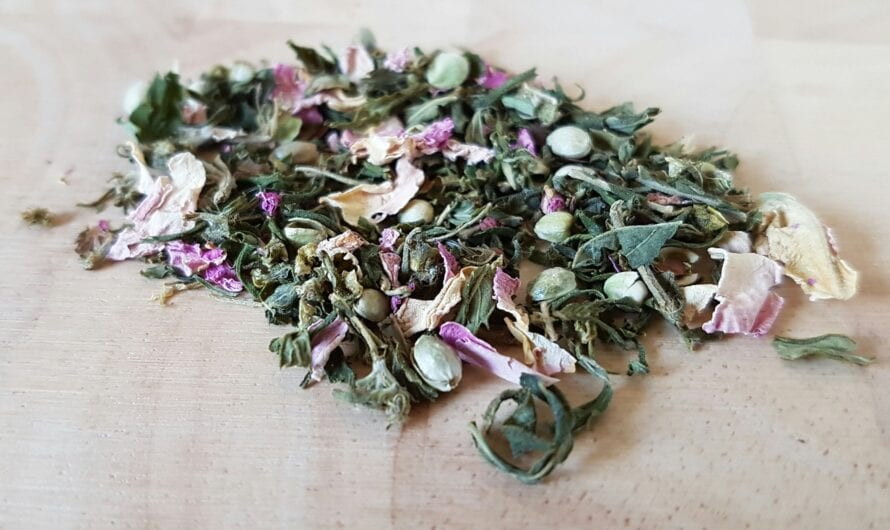 CBD Loose Leaf Tea: Everything You Need to Know