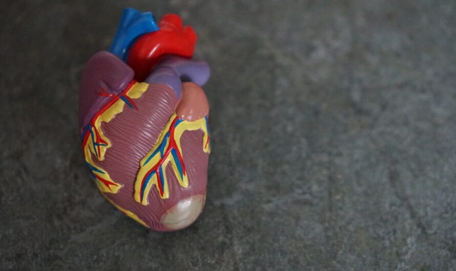 Medicines for Heart Failure: What are they and What they do?