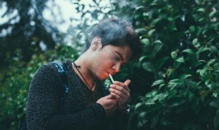 smoking magic mushroom