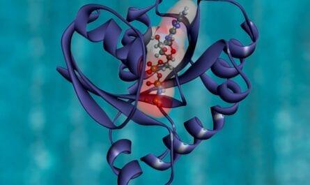Endocannabinoid Deficiency